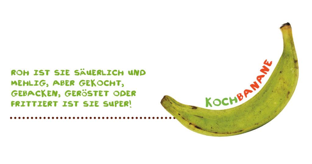 Alles über Bananen - Kochbanane
