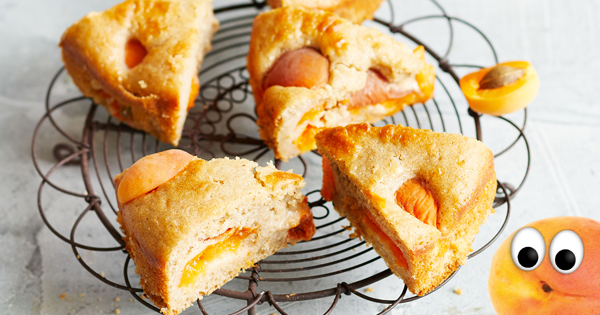 Antons Aprikosenkuchen