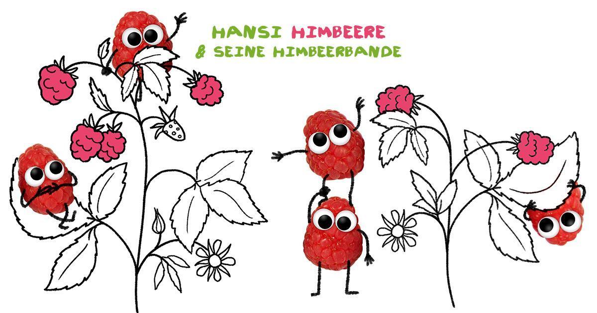 Hansi & seine Himbeerbande, die Chaoten