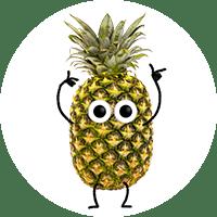 annika-ananas
