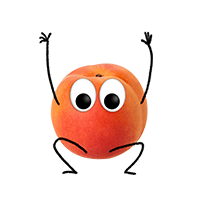 anton-aprikose-2