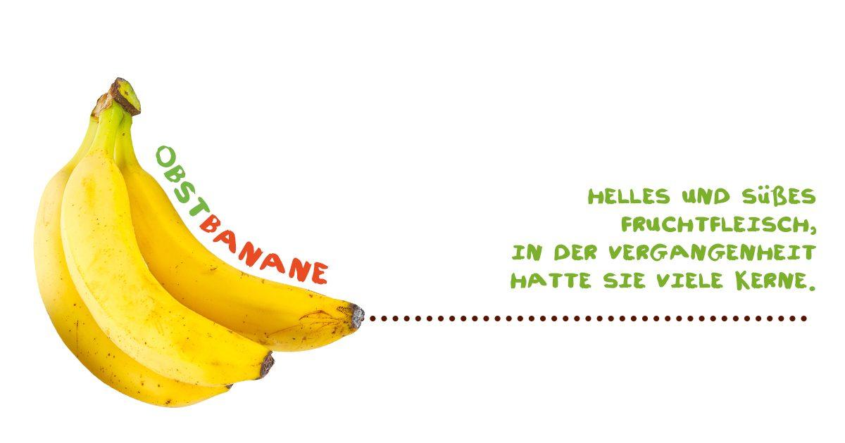 Alles über Bananen - Obstbanane