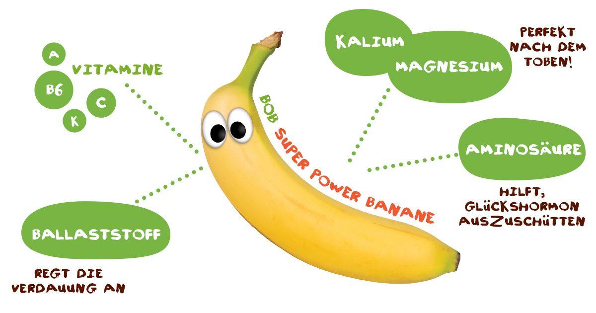 Alles über Bananen - Powerfrucht